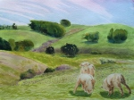 Grazing Sheep north of Point Reyes Station high-noon. Robin L. Chandler Copyright 2015.