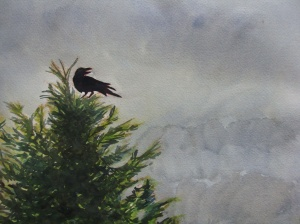 Raven on a misty morning. Robin L. Chandler Copyright 2015.