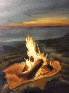 Beach fire Santa Cruz. Robin L. Chandler Copyright 2015.