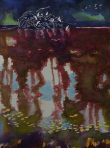 Santa Cruz lagoon. Robin L. Chandler Copyright 2015.