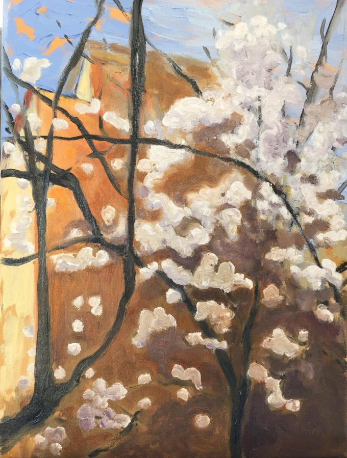 Winter plum. Robin L. Chandler Copyright 2016.