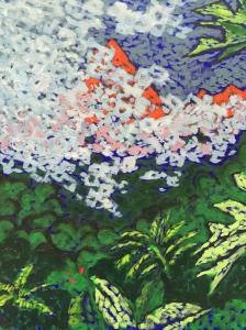 Kalalea obscured. Robin L. Chandler 2016.