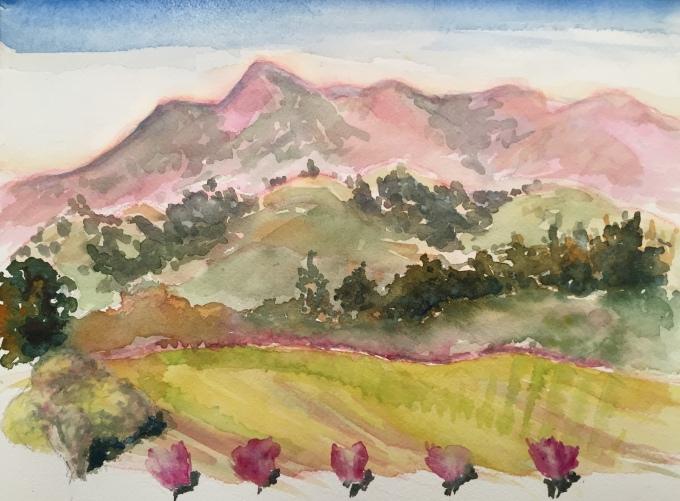 Mt.Saint Helena Spring